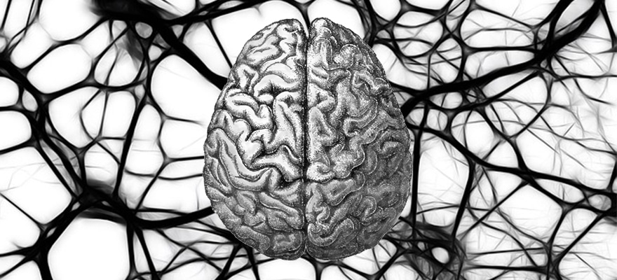 How Can Brain Science Dramatically Increase Sales and Revenues?