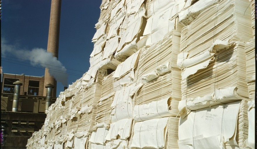 NOREXECO Lauches World-First Pulp and Paper Derivatives Exchange