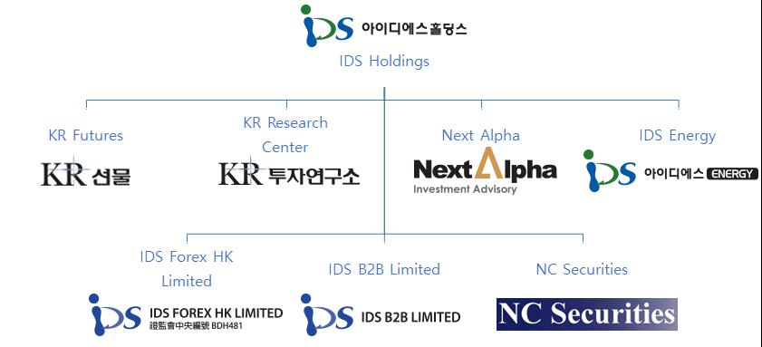 IDSHoldingsStructure