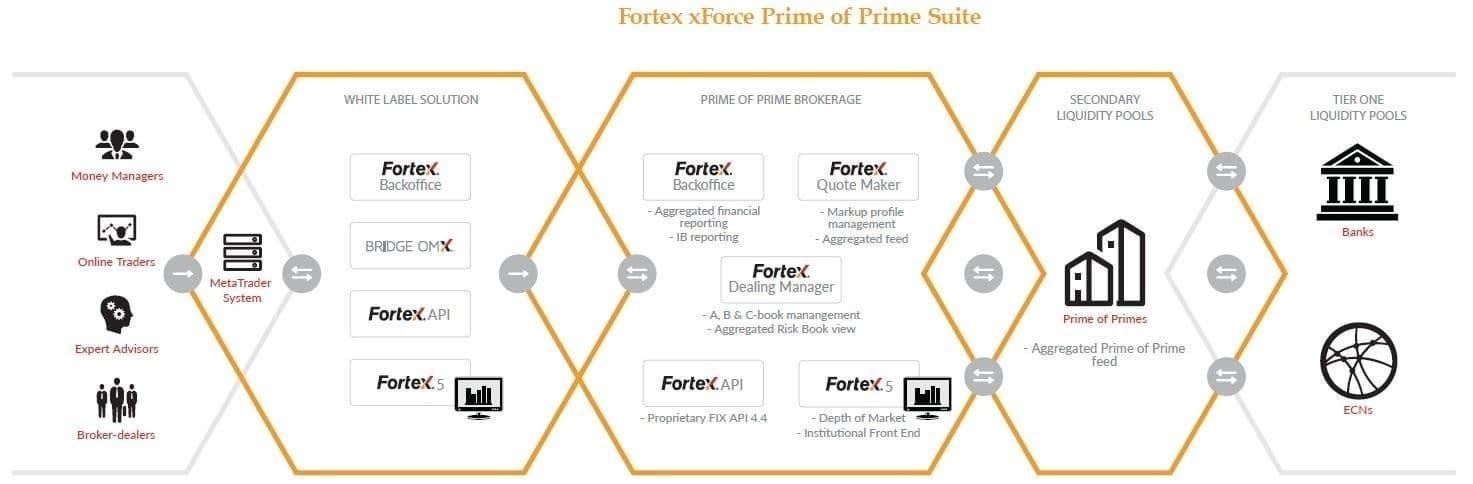 Xforce forex