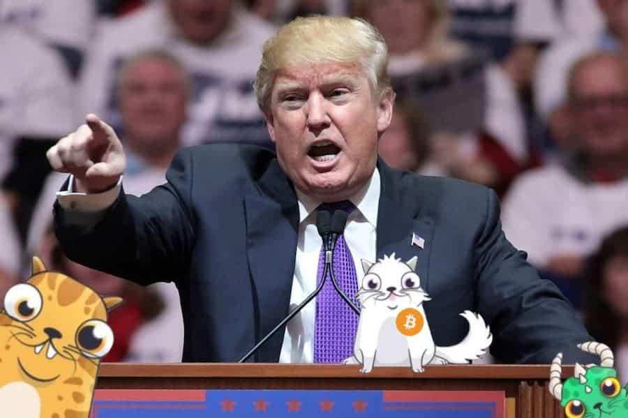 Donald Trump Crypto