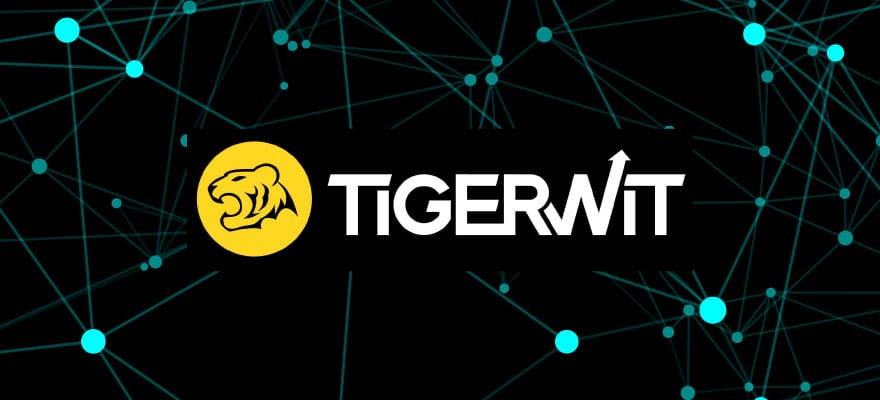 Exclusive: TigerWit's CEO – It's 'Survival of the Fittest' for EU Brokers