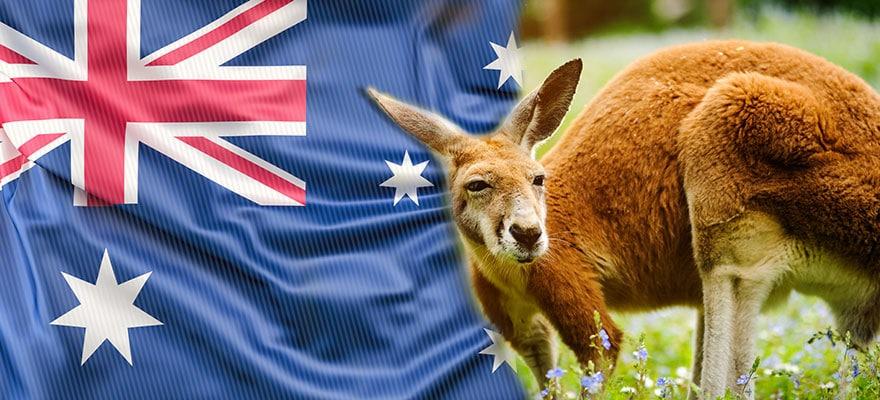 Bitcoin auto trading australia, Bitcoin auto trader australia