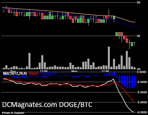 DOGE-USD June 25