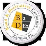 logo1 badex