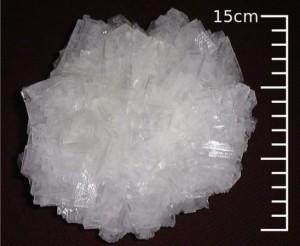 big grain of salt