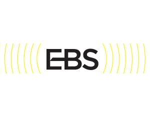 Ebs fx options
