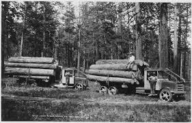 limber industry